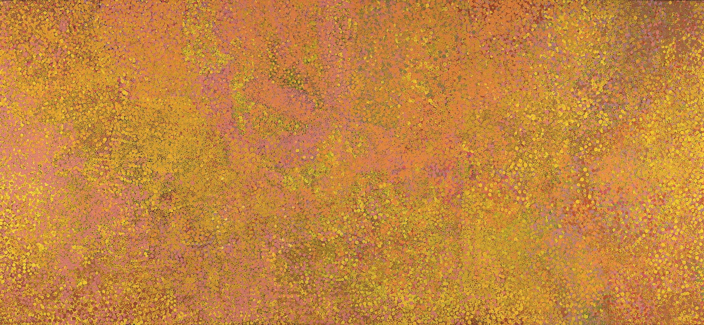 Kame-Summer Awelye II, a monumental December 1991 canvas by Emily Kame Kngwarreye.